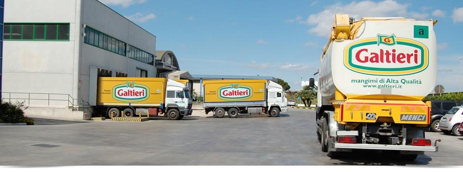 Logistica Galtieri Slide 2